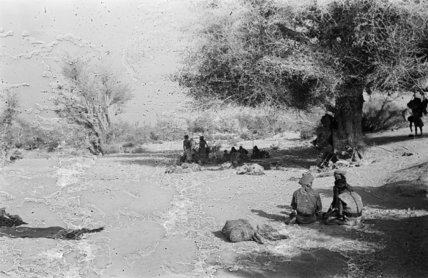 Wilfred Thesiger's camp near Ghayl ...