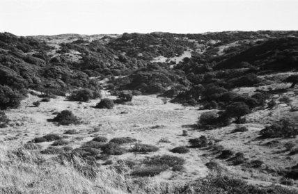 View of landscape near Kismim ...