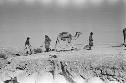 Wilfred Thesiger's party trekking in ...