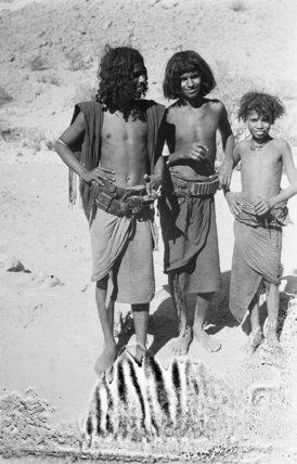 Portrait of three boys of ...