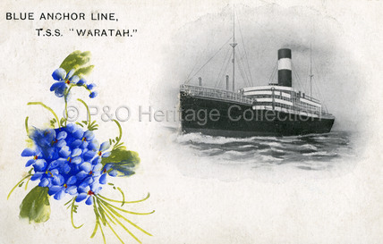 Blue Anchor Line T.S.S. WARATAH