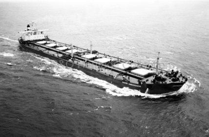 NAESS AMBASSADOR at sea