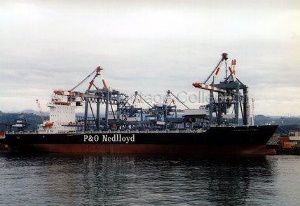 P&O NEDLLOYD SYDNEY loading in port