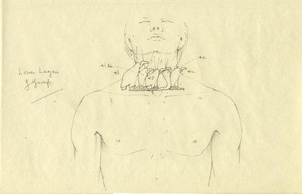 Vulture and uraeus amulets on the Tutankhamun's mummy - 2