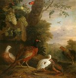 Birds in a landscape, by Jakob Bogdany