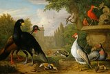 Exotic fowl in an ornamental garden, by Jakob Bogdany