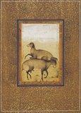 Ram and ewe in a meadow, Mogul School