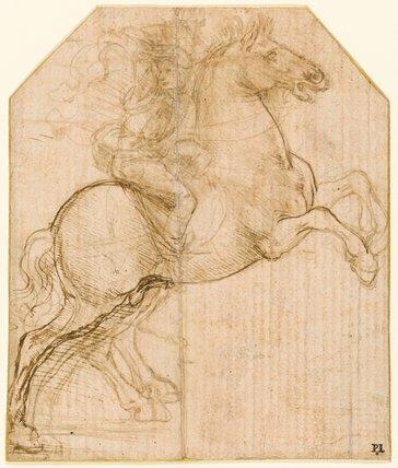 A rider on a rearing horse, by Leonardo da Vinci