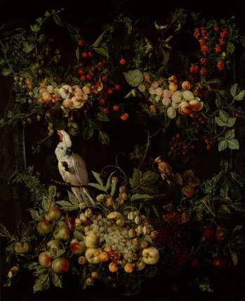 Swags of fruit and flowers with a Cockatoo, by Jan van Kessel
