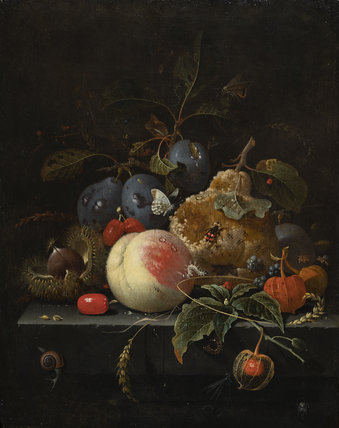 Fruit and Nuts on a Stone Ledge, by Abraham Mignon