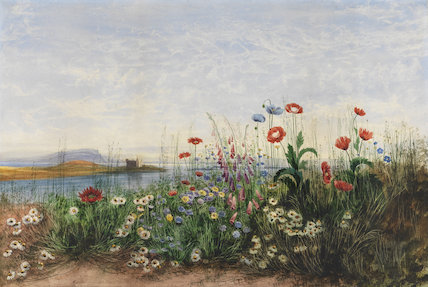 Wild flowers in a landscape setting, by Andrew Nicholl