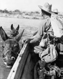 Gurkhas hold onto their mules as they swim across the Irrawaddy River in Burma during the advance towards Mandalay, January 1945.