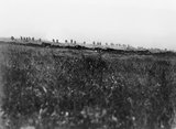 Battle of the Somme. A support company of an assault battalion, of the Tyneside Irish Brigade, going forward shortly after zero hour on 1 July 1916 during the attack on La Boisselle.