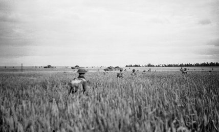 Infantry of 15th (Scottish) Division advance through waist-high corn, supported by Churchill tanks of 7th Royal Tank Regiment during Operation 'Epsom', Normandy, 28 June 1944.