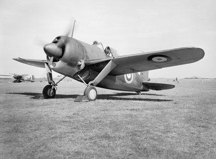 Brewster Buffalo Mk I, August 1940.