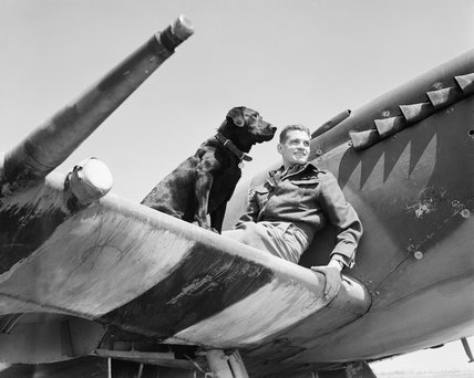 Wing Commander J E 'Johnnie' Johnson, commanding No. 144 (Canadian) Wing, on the the wing of his Supermarine Spitfire Mk IX with his Labrador retriever Sally, at Bazenville, Normandy, 31 July 1944.