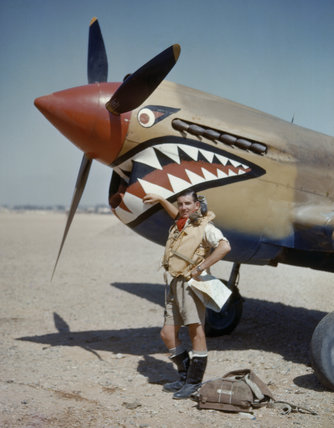 Flight Lieutenant A R Costello of No. 112 Squadron standing by his Curtiss Kittyhawk Mk I at Sidi Heneish, Egypt, April 1942.