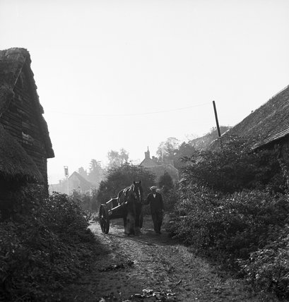 Jospeh Humphries leads his horse-drawn water cart along a country lane at Hills Farm, Kingston Blount, Oxfordshire in 1940.