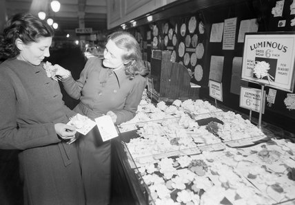A shop assistant  shows a customer a luminous flower in Selfridge's department store, London. These flowers were one of numerous blackout accessories available in 1940 to make pedestrians more visible on the dark streets of the capital.