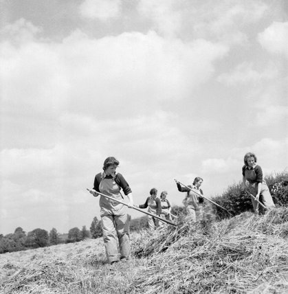 New recruits to the Women's Land Army making hay as part of their training at the Northampton Institute of Agriculture near Moulton in 1942.