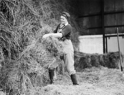 A member of the Women's Land Army (WLA) stacking hay on a farm during the Second World War.