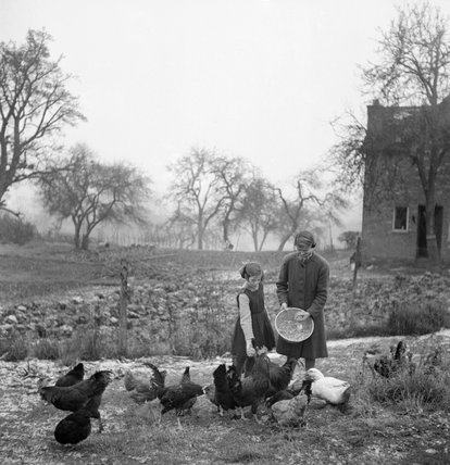 A mother and daughter feed chickens in the garden of their home in Rowney Green, Worcestershire during 1943.