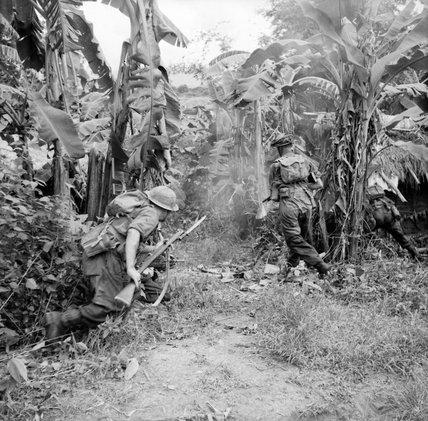 Men of the 36th Infantry Division advance through a banana grove in Burma, 6 November 1944.