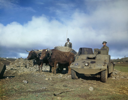 An RAF Morris LRC (light reconnaissance car) alongside a bullock cart on an airfield in the Azores, January 1944.