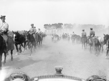 British troops taking horses to water between Albert and Becourt, Somme, September 1916.