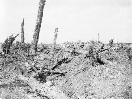 Landscape scene near Guillemont, Somme, September 1916.