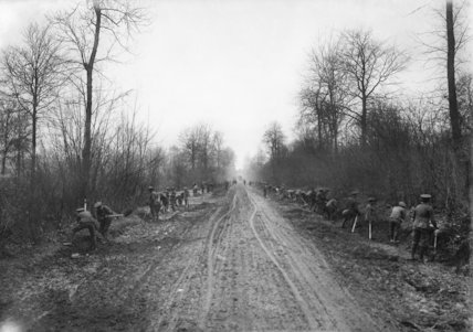 British troops widening a road through Aveluy Wood, Somme, November 1916