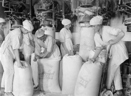 Female workers pack flour in a mill at the works of Rank and Sons, Birkenhead, Cheshire, in September 1918.