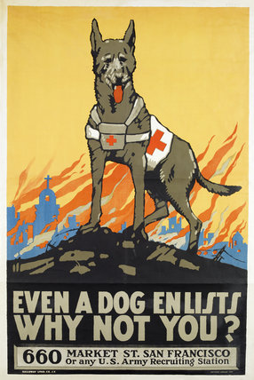 Even A Dog Enlists Why Not You By Unknown At Imperial War
