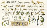 Animaux de la Perse Sassanide...E. Collinot & A. de Beaumont, Ornements de la Perse, Paris: Canson et Compagnie, 1880, pl.4