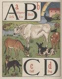 'A B C D'