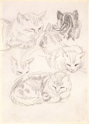 Six studies of a cat