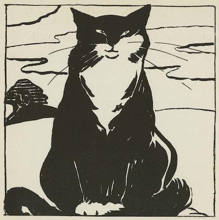 'The Cat'