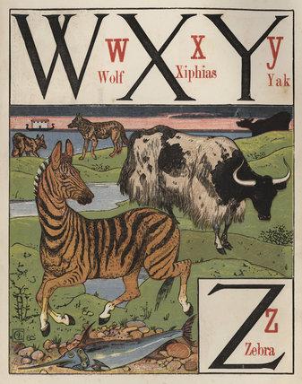 'W X Y Z'