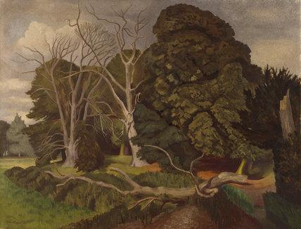 The Fallen Tree