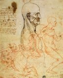 Torso of a Man in Profile, the Head Squared for Proportion, and Sketches of Two Horsemen, c.1490 and c.1504 (pen &amp; ink and red chalk over metalpoint on paper