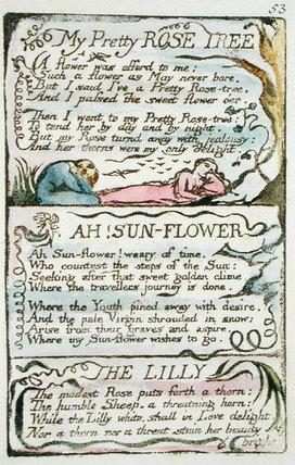 My Pretty Rose Tree by William Blake