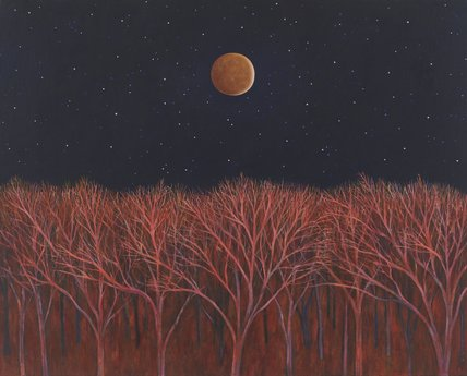 Lunar Eclipse, 2008