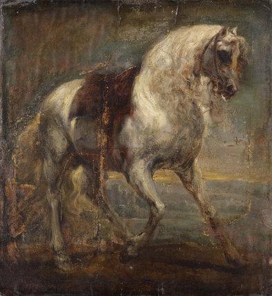 A Grey Horse