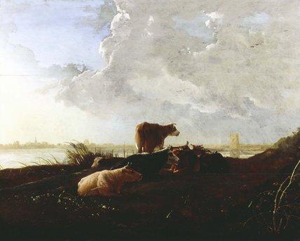 Cattle near a River