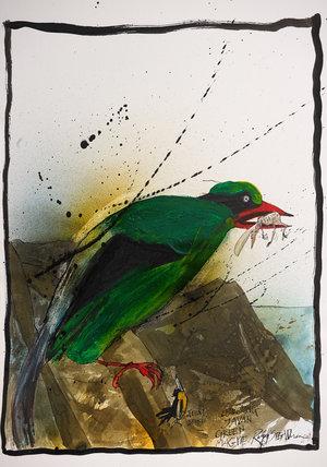 Nextinction - Javan Green Magpie