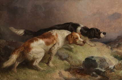 Setters on the Moor