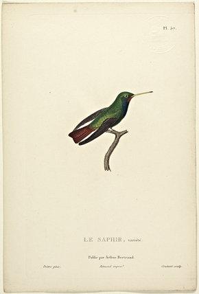 Le Saphir (Variety)