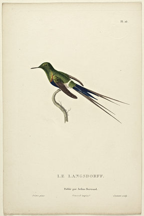 Le Langsdorff