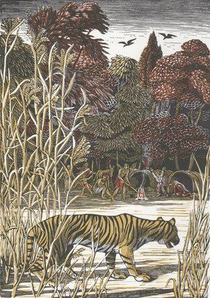 A Tiger! A Tiger! colour