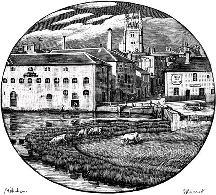 Mill Lane, Cambridge